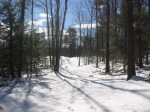 Woodland Trail, Lot 12