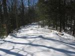 Woodland Trail, Lot 5